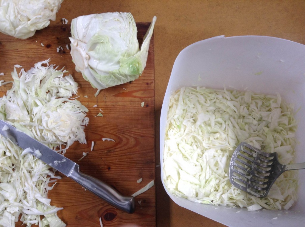 Sauerkraut in progress